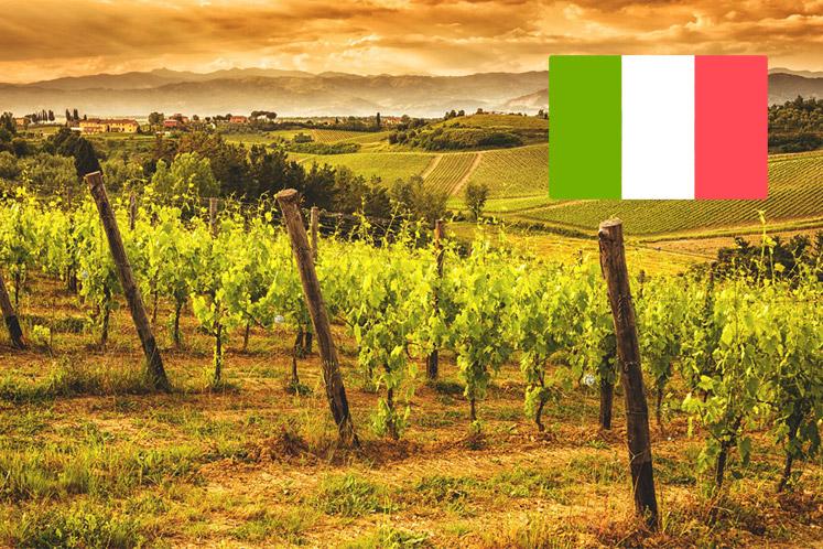 Italiaanse wijnhuizen