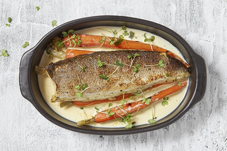Daily fesh food  | HANOS