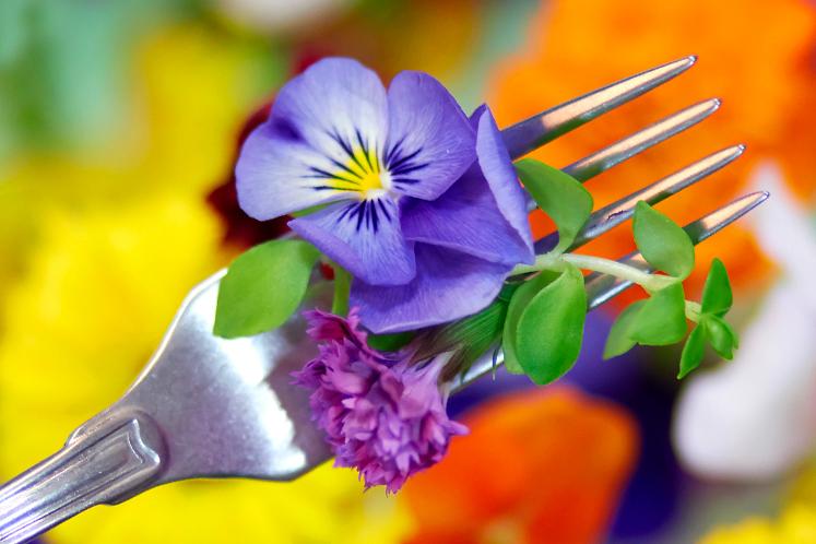 Eetbare bloemen | HANOS