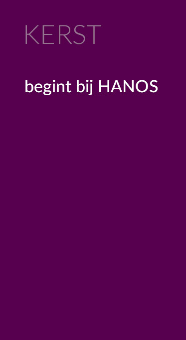 ban_pro_kerst_373x682_1611.jpg
