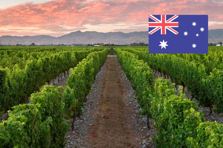 Australische wijnhuizen