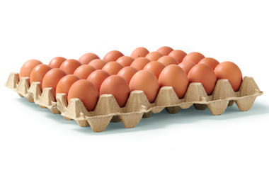 HANOS verklaring besmette eieren