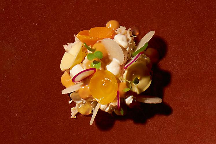 Noordzeekrab met appel, hangop, wortel en garnalenjus