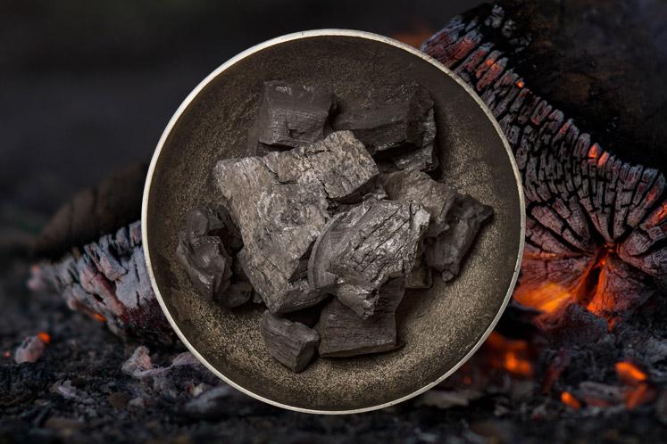 Gastro Houtskool | voor dichte barbecues en houtskoolovens | Verschillende soorten houtskool