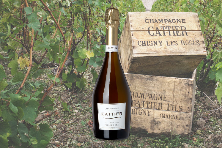 Cattier Brut Premier Cru   Mousserende wijn