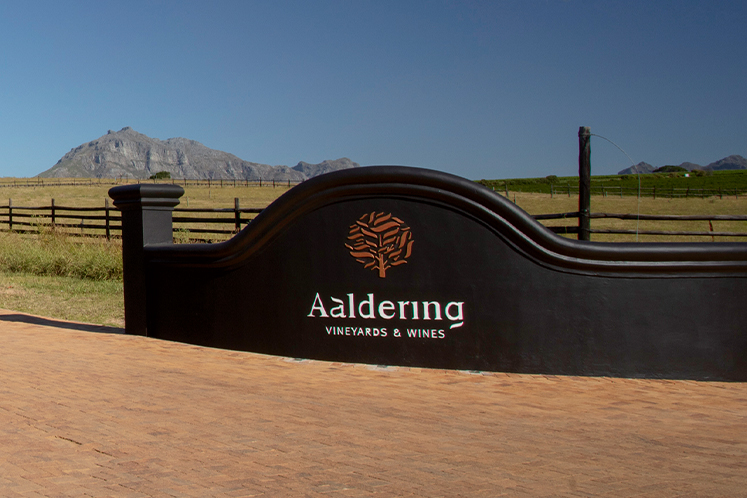 Aaldering | Zuid-afrikaanse wijn