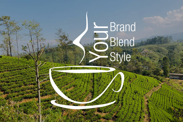 Your Brand, Your Blend & Your Style | Tea Experience
