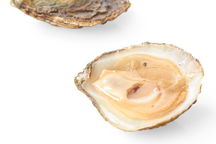 Platte oesters met mes