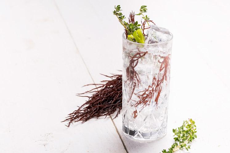 Vodka yuzu tonic OYESTER44