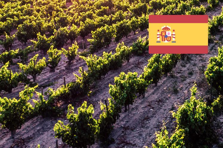 Spaanse  wijnhuizen