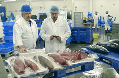 Verklaring tonijn carpaccio