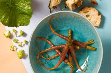 Inspiratie en recepten in de culinaire vegetarische keuken