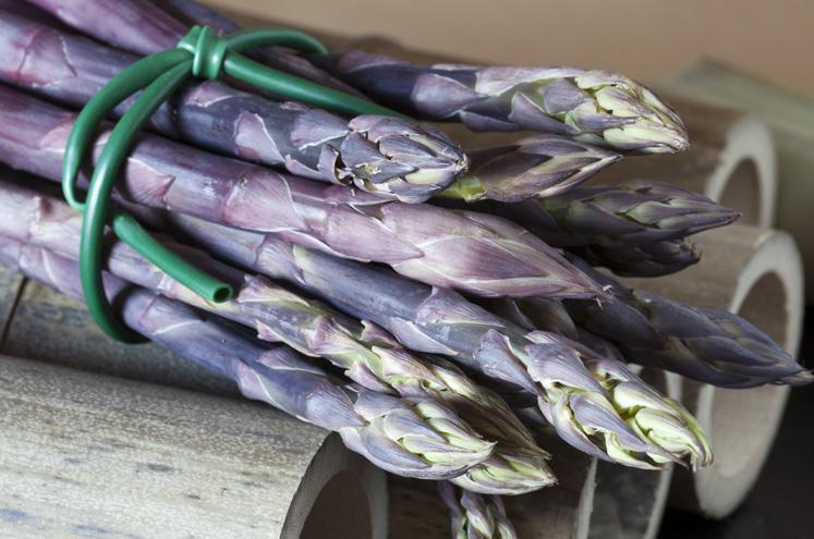 Paarse asperges | HANOS