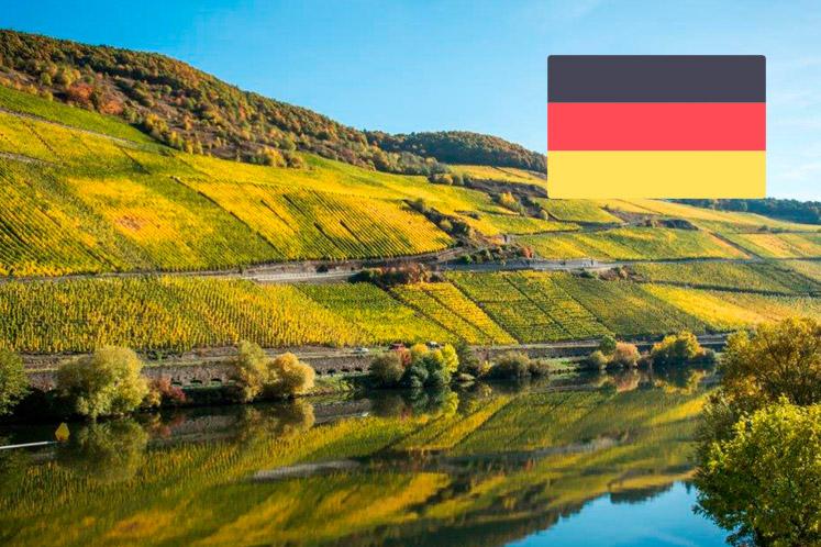 Duitse wijnhuizen