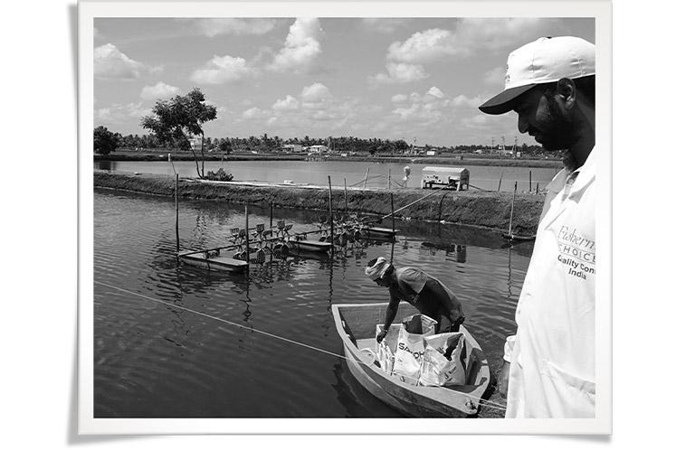 Fisherman's Choice| Samenwerkingen met leveranciers | HANOS 45 Jaar
