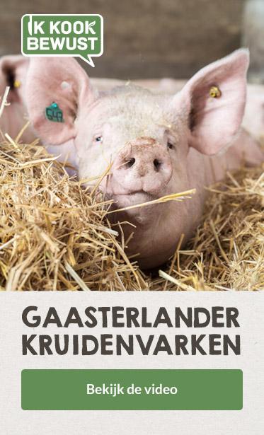 20190111_ban_pro_nl_ikb_gaaasterlands_kruidenvarken_373x615_1901.jpg