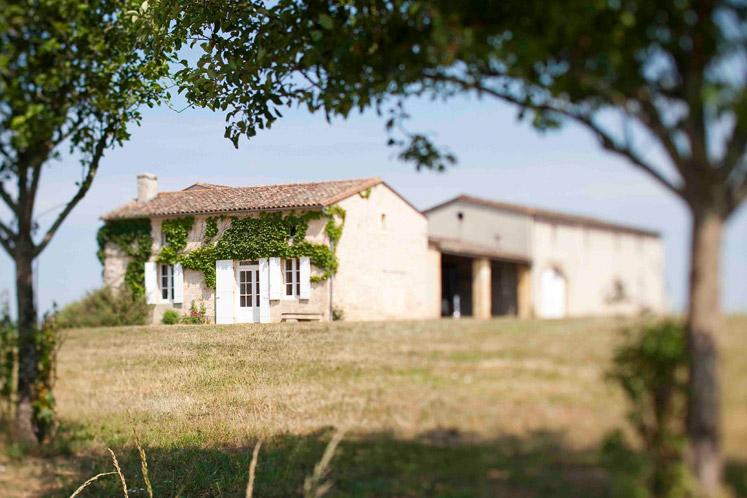 Gran vins de Bordeaux | De verhalen achter onze producten