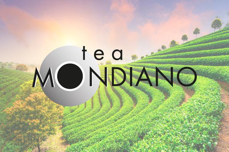 Tea Mondiano | Tea Experience