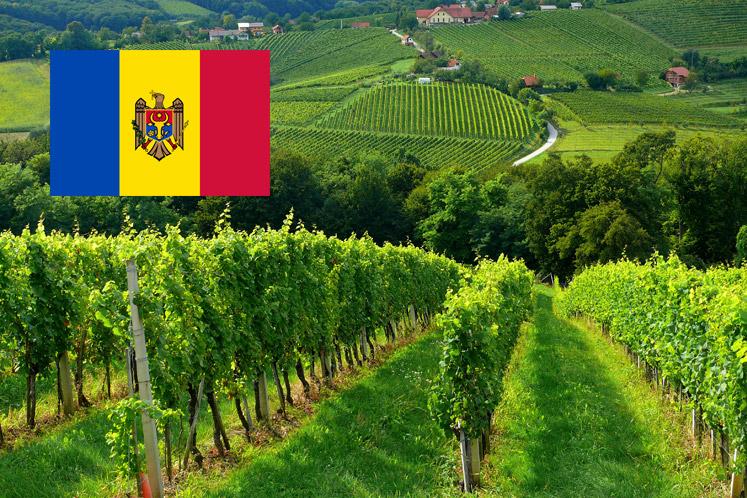 Wijnland Moldavië