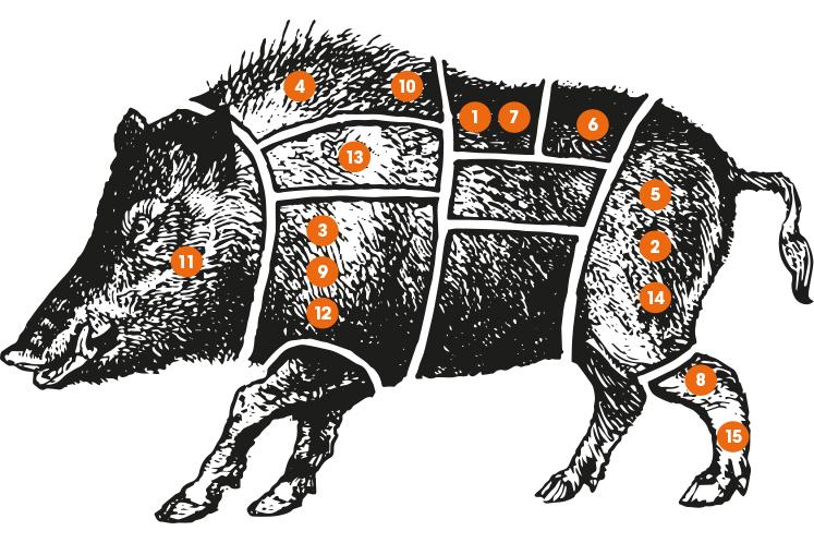 Onderdelen wild zwijn | Assortiment wild bij HANOS