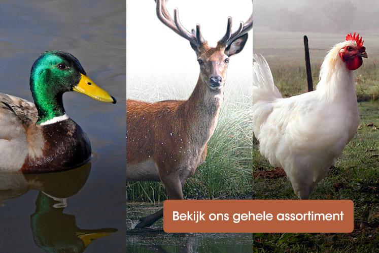 Assortiment wild & gevogelte