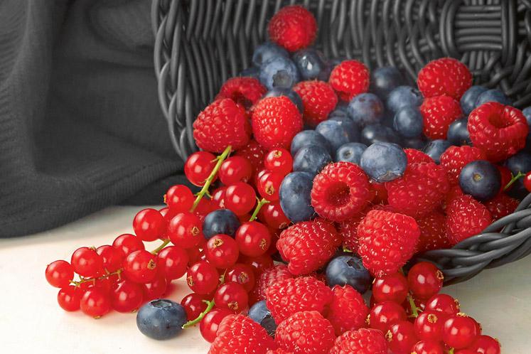ban_thema_zacht_fruit_1607_747x498.jpg