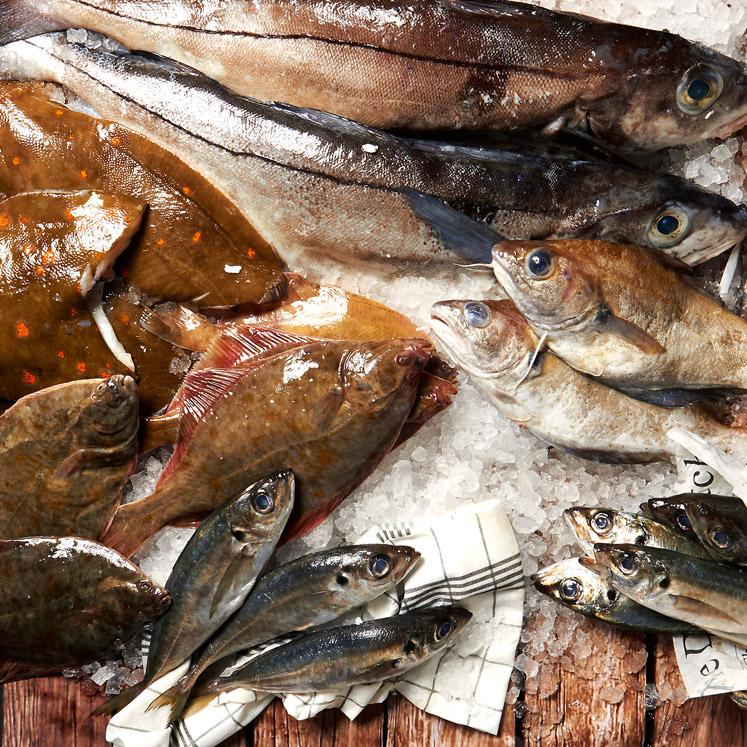 Vergeten vissen | heerlijke betaalbare vissoorten