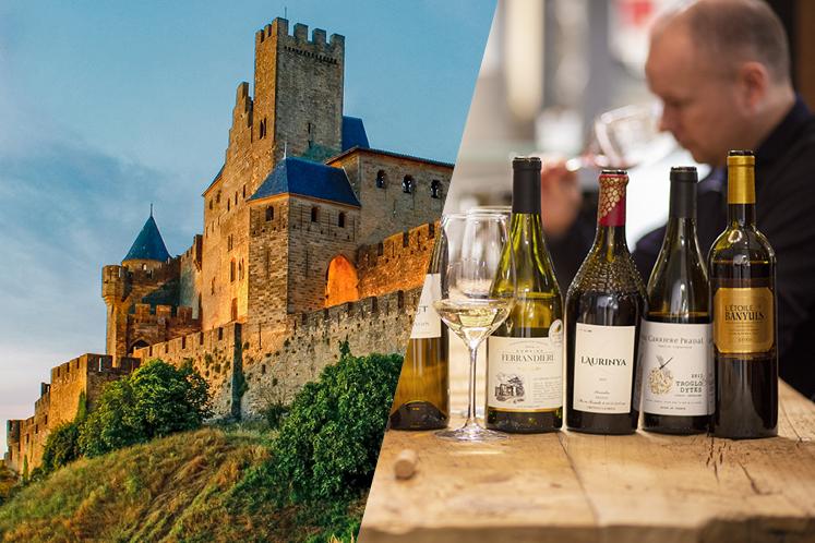 Wijnspecialisten over de Languedoc