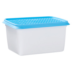 FREEZER CONTAINERS 1 L ALASKA