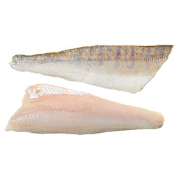 PIKE-PERCH FILLET SKIN ON SCALED