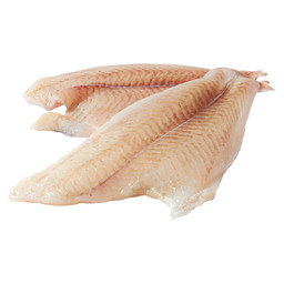 BRILL FILLET FROM BRILL 1 N/S
