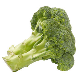 BROCCOLI IMPORT