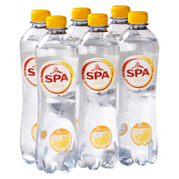 SPA TOUCH SPARKLING LEMON 50CL PET