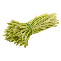 ASPERGE KORENAAR