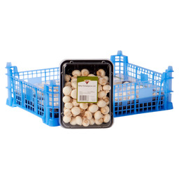CHAMPIGNON WIT MINI 4x250
