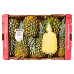 ANANAS GOLD GROOT