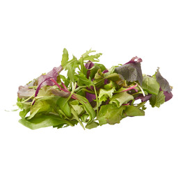 SALADMIX MESCLUN PACKED
