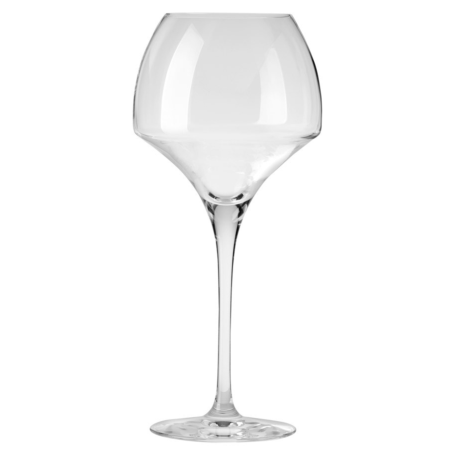 WINE GLASS OPEN UP TANNIC 55CL