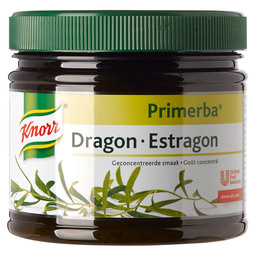 DRAGON PRIMERBA