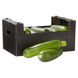 COURGETTE GROEN JONG  PETIT HOLLAND