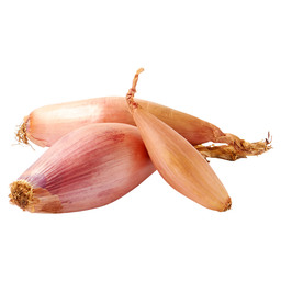 SHALLOT BANANA (OVAL) FRANCE