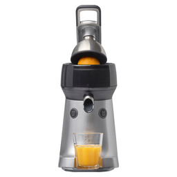 THE JUICER STAINLESS STEEL