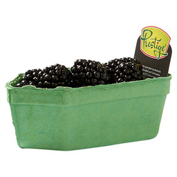 BROMBEEREN HOLLAND