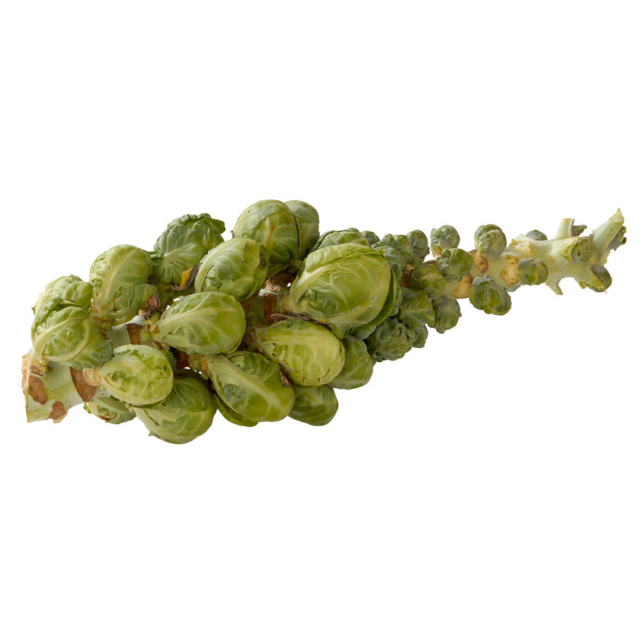 SPROUTS STUMP