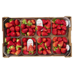 STRAWBERRY IMPORT SPAIN ESTHER