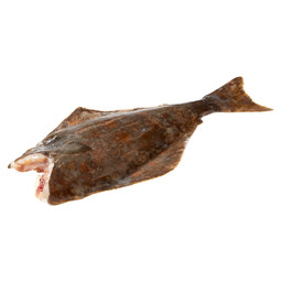 HALIBUT SMALL MET CUP WHITE 1/3 KG