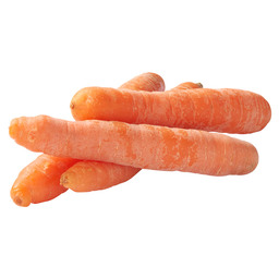 WINTER CARROT BIO
