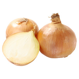ONION DUTCH MEDIUM 60/80