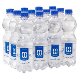 MINERAALWATER 500ML KOOLZUURVRIJ NATUREL