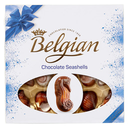 SEASHELLS THE BELGIAN